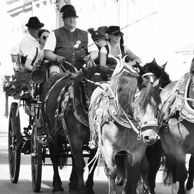 2.Pferdekutschengala-2021